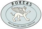 Boreas Travel Logo